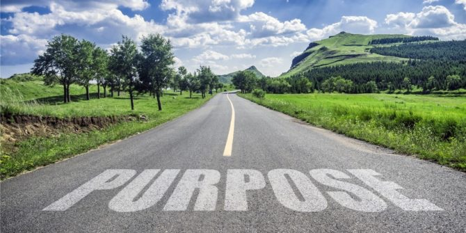 Your purpose - Your path